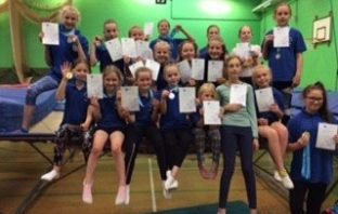 Honiton trampolinists