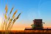 East Devon arable farmers