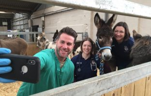James Greenwood with vets Karen Pickering and Vicky Grove. Picture: The Donkey Sanctuary