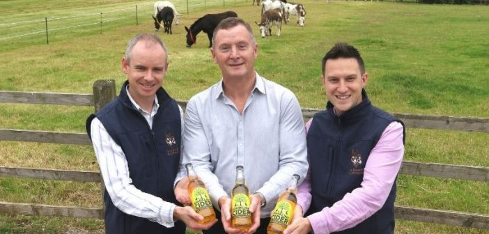 Special edition cider launches to celebrate 50 years of The Donkey Sanctuary