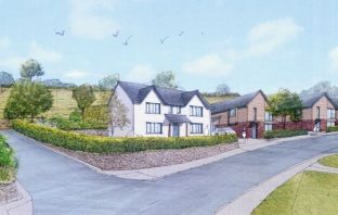An artist's impression of the proposed homes off King Alfred Way in Newton Poppleford