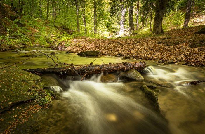 Upstream Thinking