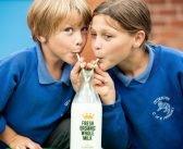 Organic milk vending machine bridges gap between cows and consumers in East Devon
