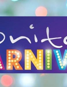 Honiton Christmas Carnival