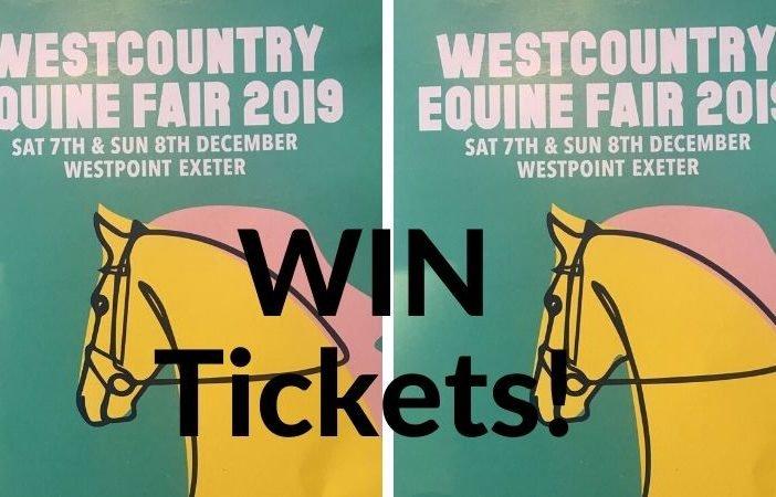 Equine fair