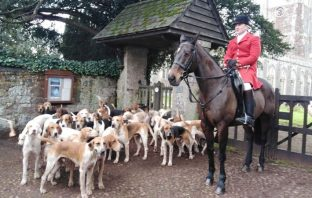 East Devon Hunt