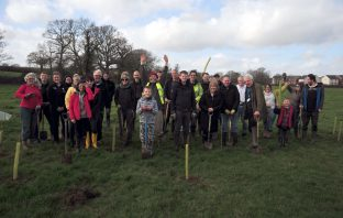Volunteers helped plant 500 trees in Cranbrook. Picture: East Devon District Council
