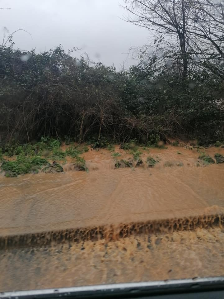 Exeter Road in Exmouth. Picture: Georgina Foat