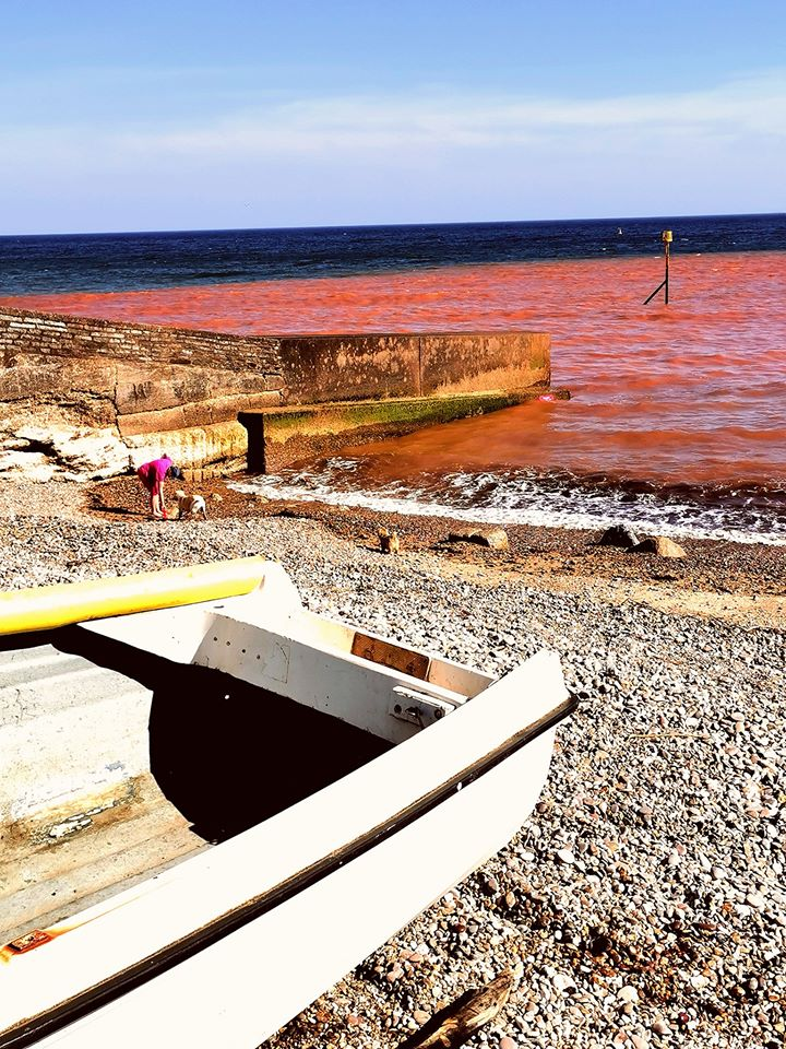 Jutta Gorf took this photo of a red sea at around 5pm on April 21. Picture: Jutta Gorf