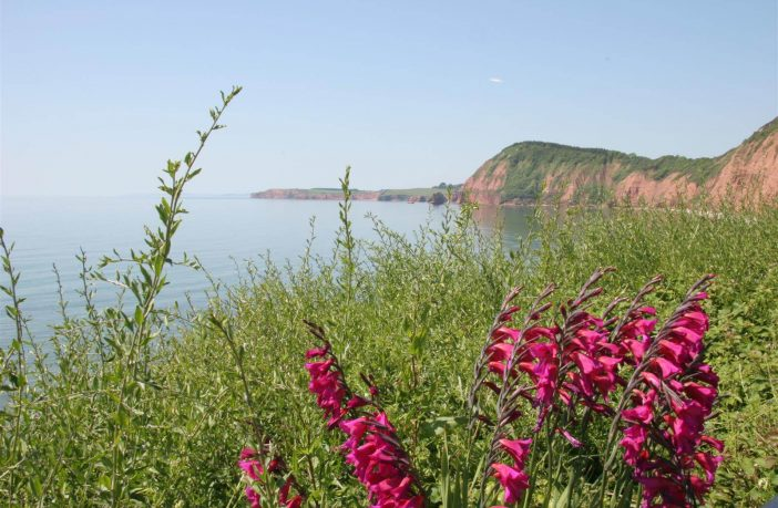 The view from Connaught Gardens in Sidmouth. Picture: East Devon District Council