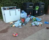 Warning East Devon parks and open spaces could be shut over rubbish behaviour and groups ignoring social distancing rules