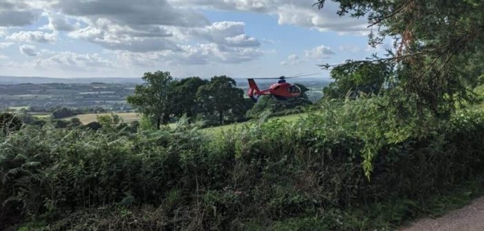 Man trapped under 80-foot tree at Ottery is rescued by members of the public and firefighters
