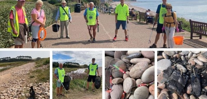 Lions' pride in Budleigh sparks summer of coast and community clean-ups