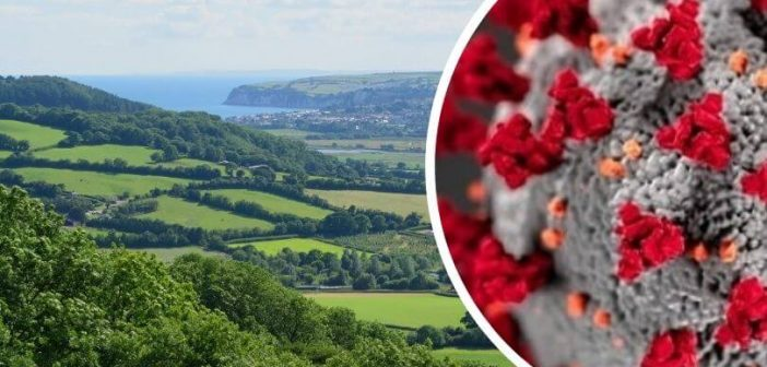 Another 244 Covid cases confirmed in East Devon with 'clusters' in 19 areas of district