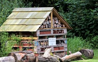 Training cash has been available to Exmouth residents for projects like bug hotels. Picture: EDDC
