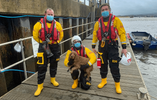 Chezz the dog safely in the hands of volunteer crew (l-r) Roy Stott, David Preece and James Edge. Image: Steve Hockings-Thompson/ Exmouth RNLI