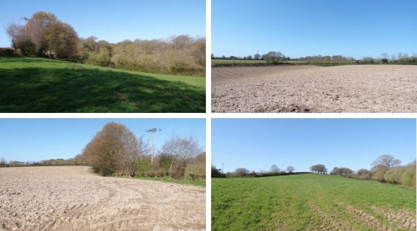 The development site at Thorne Farm in Ottery sT Mary. Images from the planning application: Devon County Council/NPS Group