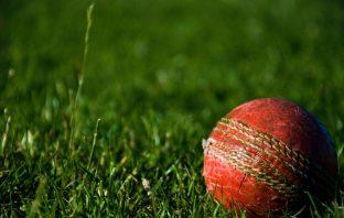 Cricket East Devon