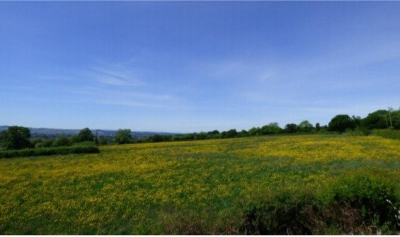 The site in Pinhoe, Exeter. Image Michael Bennett, from his objection to the application.