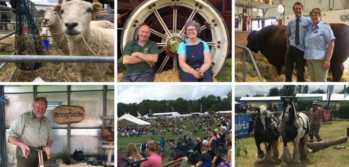 PHOTOS & VIDEO: 'Lots of smiling faces' as thousands of visitors return to Devon County Show